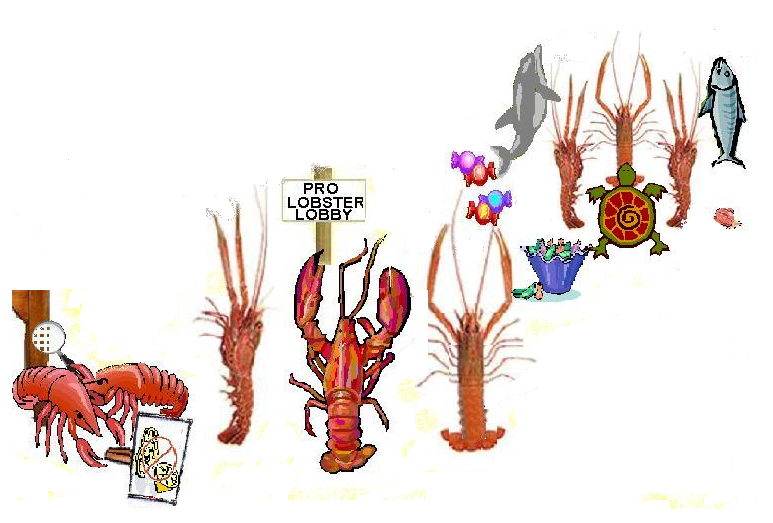 lobsters02